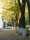Herbst in Chisinau
